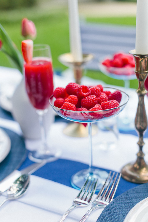 design darling fourth of july raspberry coupes