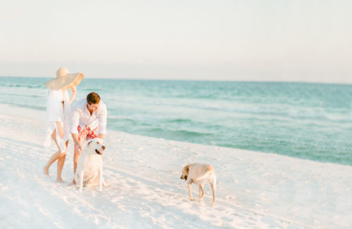 beach engagement photos with dogs