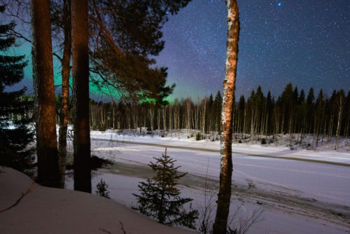 design darling northern lights in finland