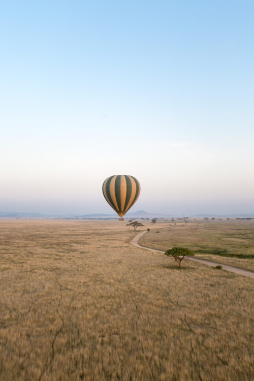 four seasons serengeti honeymoon review