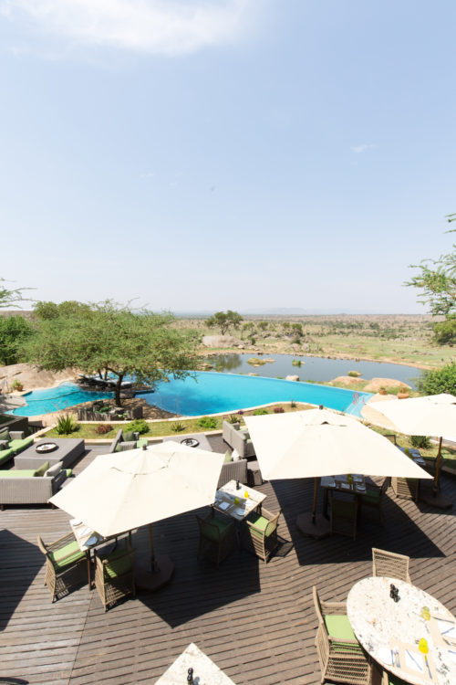 four seasons serengeti pool