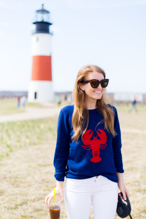 design darling lobster sweater