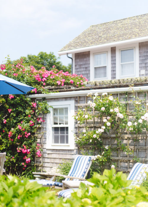 rose covered cottage sconset nantucket