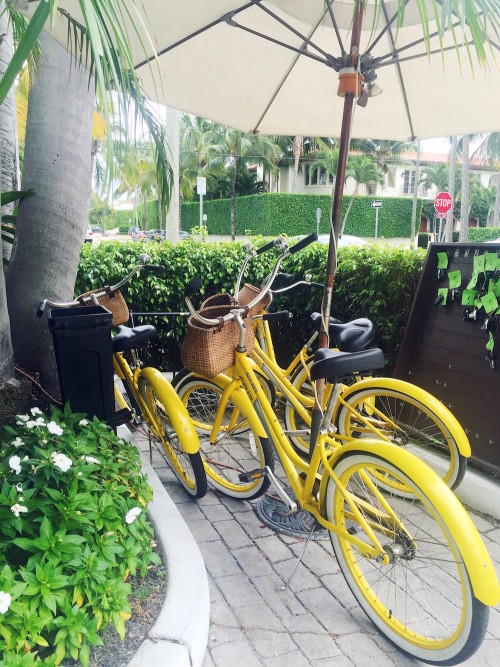 brazilian court palm beach yellow bikes