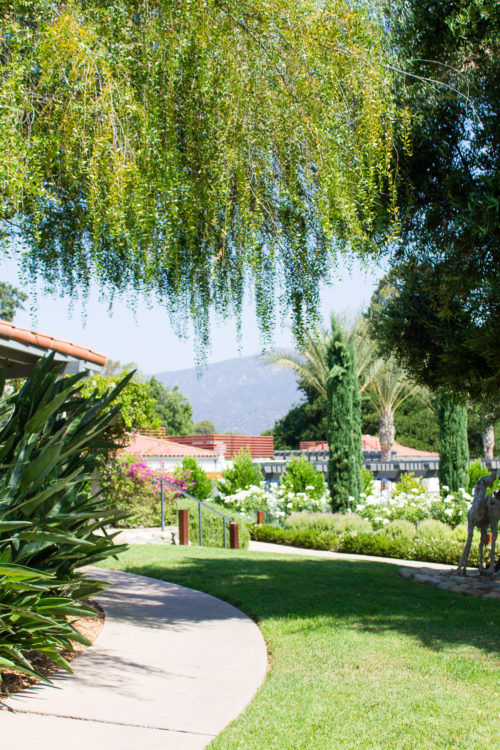 ojai valley inn and spa wedding weekend