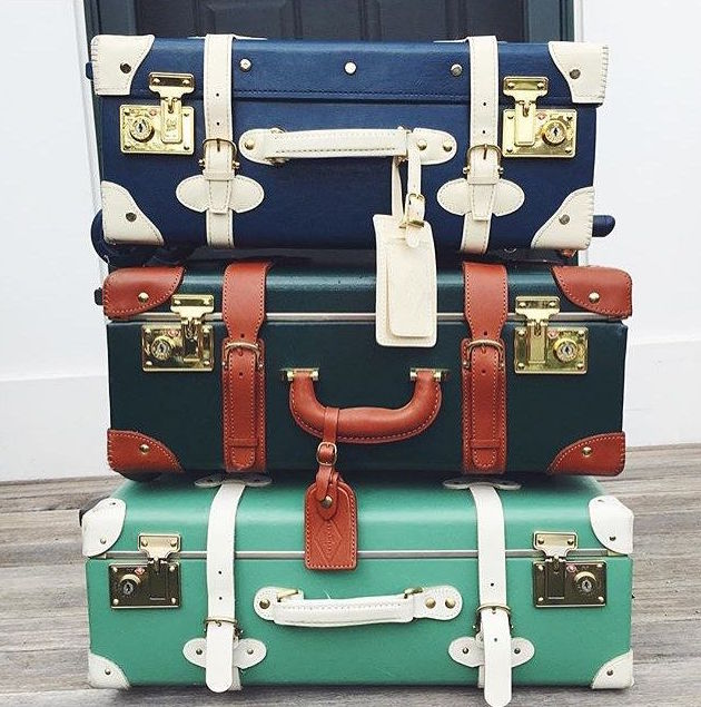 design darling steamline luggage