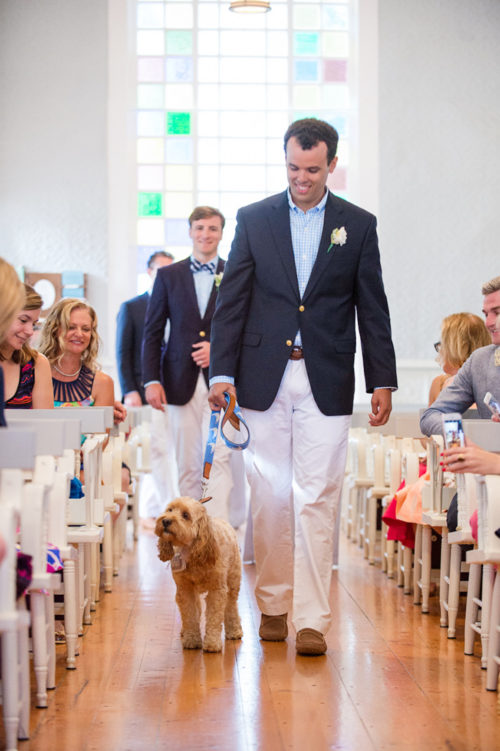 design darling wedding dog ring bearer outfit