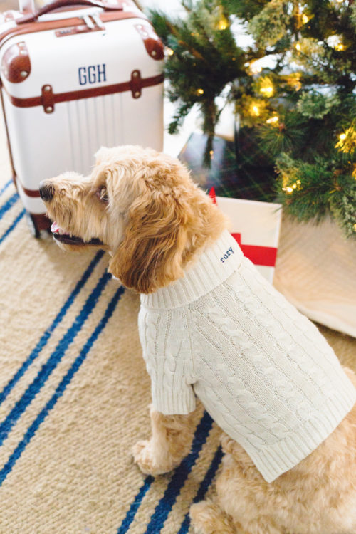 design darling mark & graham cable knit dog sweater