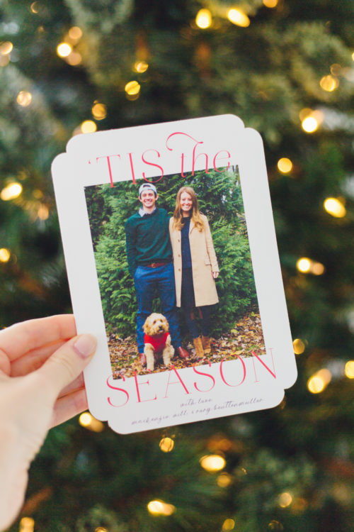 minted 'tis the season holiday cards