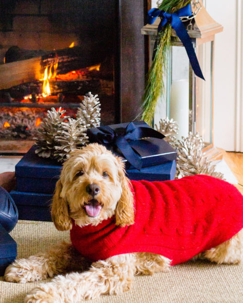 ralph lauren cable cashmere dog sweater sizing