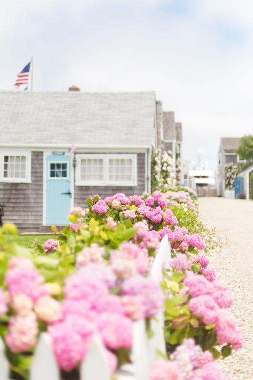 Nantucket Print Shop Hydrangea Cottage