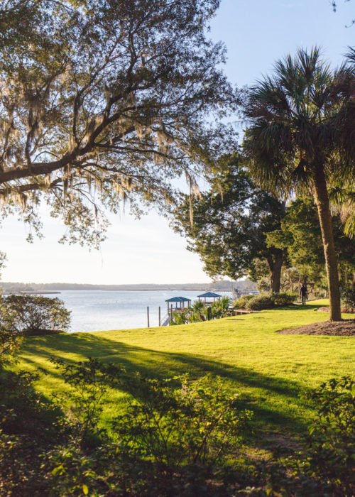 bluffton sc on design darling