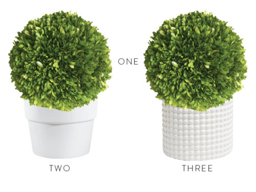 design darling boxwood topiaries