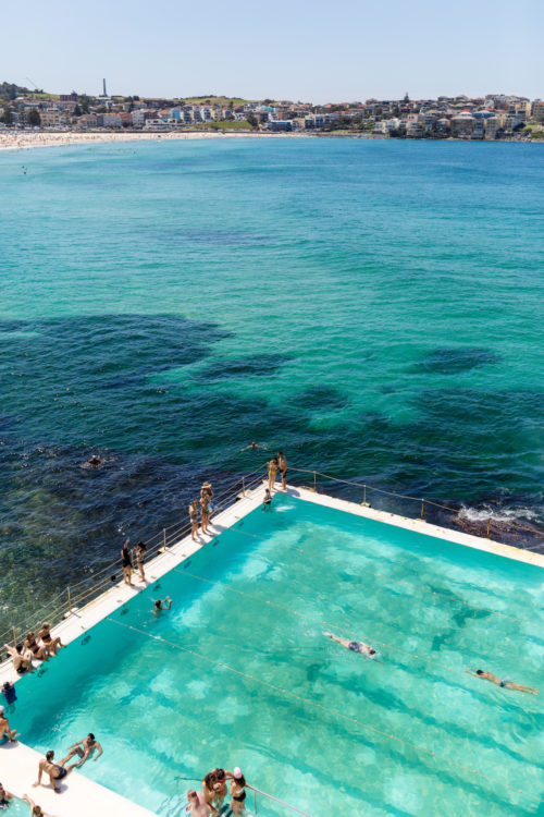 bondi icebergs on design darling