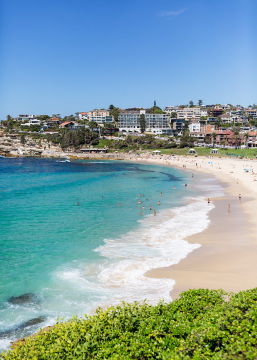 bronte beach design darling