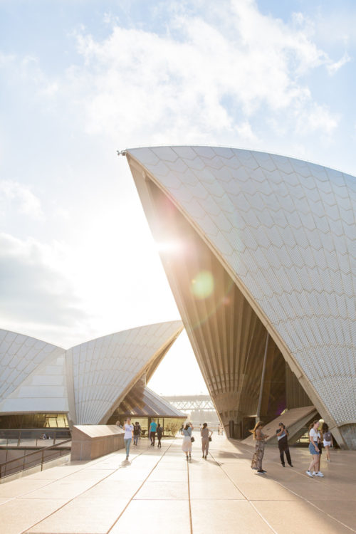 design darling sydney opera house