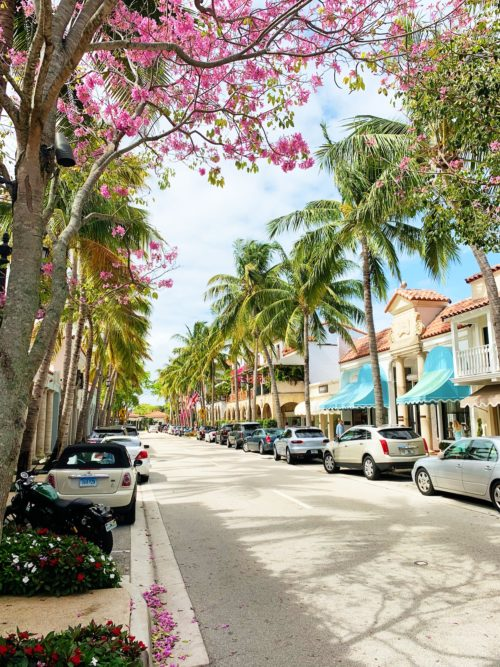 worth avenue palm beach