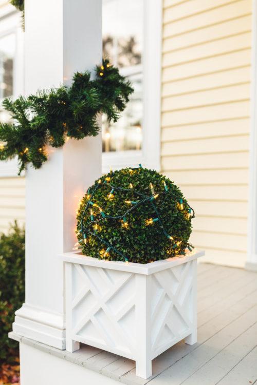 design darling topiary ball planters