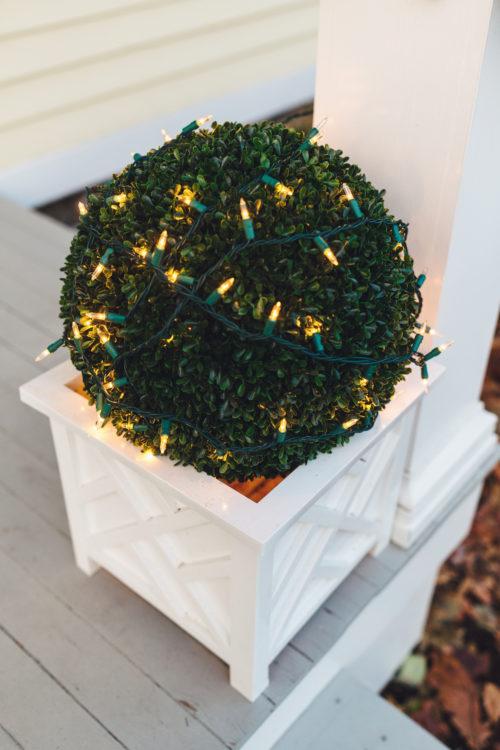 design darling topiary planters