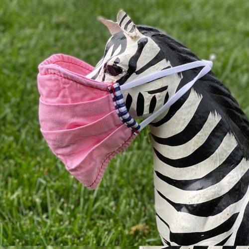 parker thatch pink poplin face mask