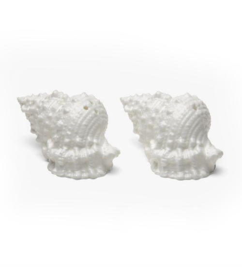 conch shell salt and pepper shakers