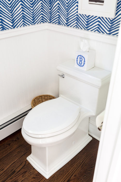 kohler memoir toilet