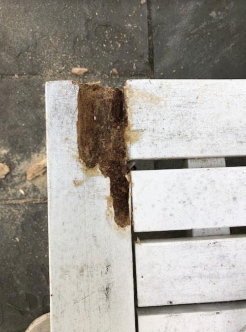 repairing wood rot on outdoor furniture 1