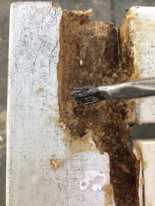 repairing wood rot on outdoor furniture 2