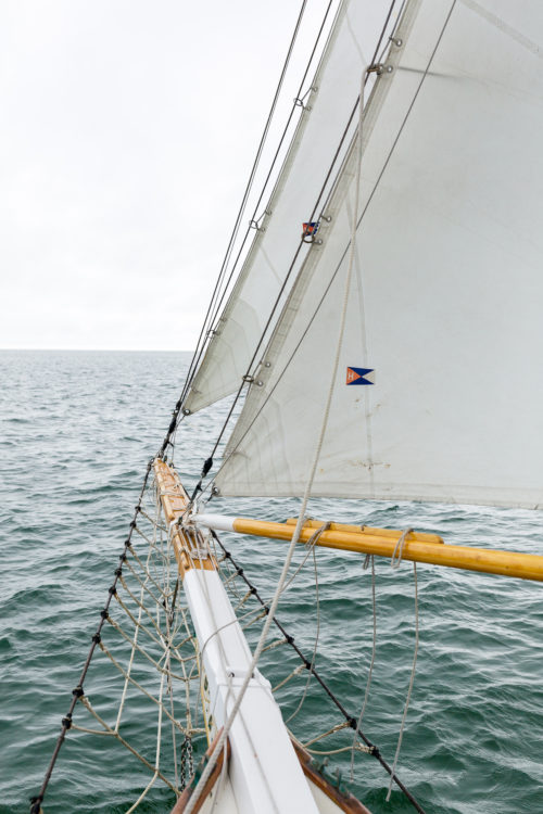endeavor sailing