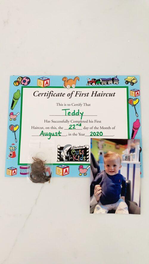 teddy 604
