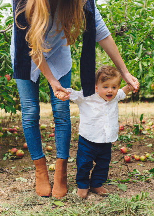 apple picking lyman orchards 5