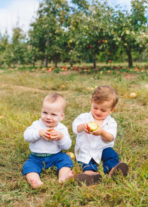 apple picking lyman orchards 9