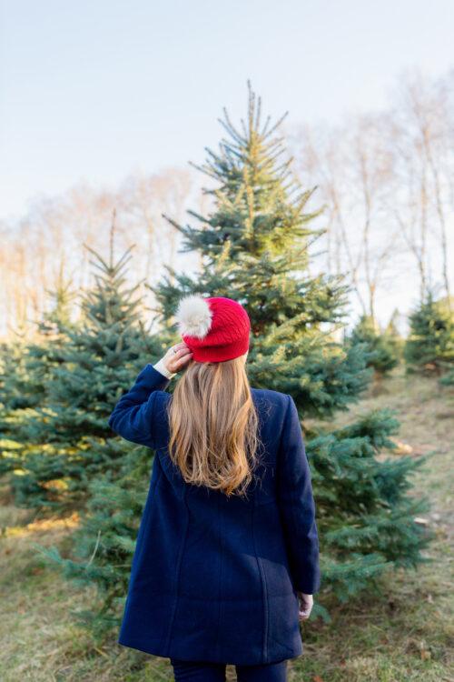 design darling christmas tree farm