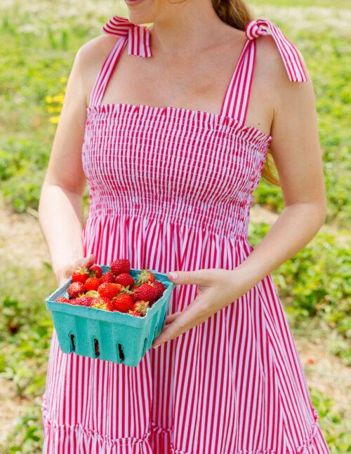 bartlett's farm strawberry picking maxwell & geraldine brooke bow shoulder dress in red
