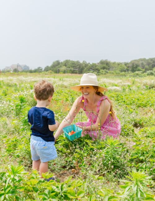 bartlett's farm strawberry picking maxwell & geraldine brooke dress