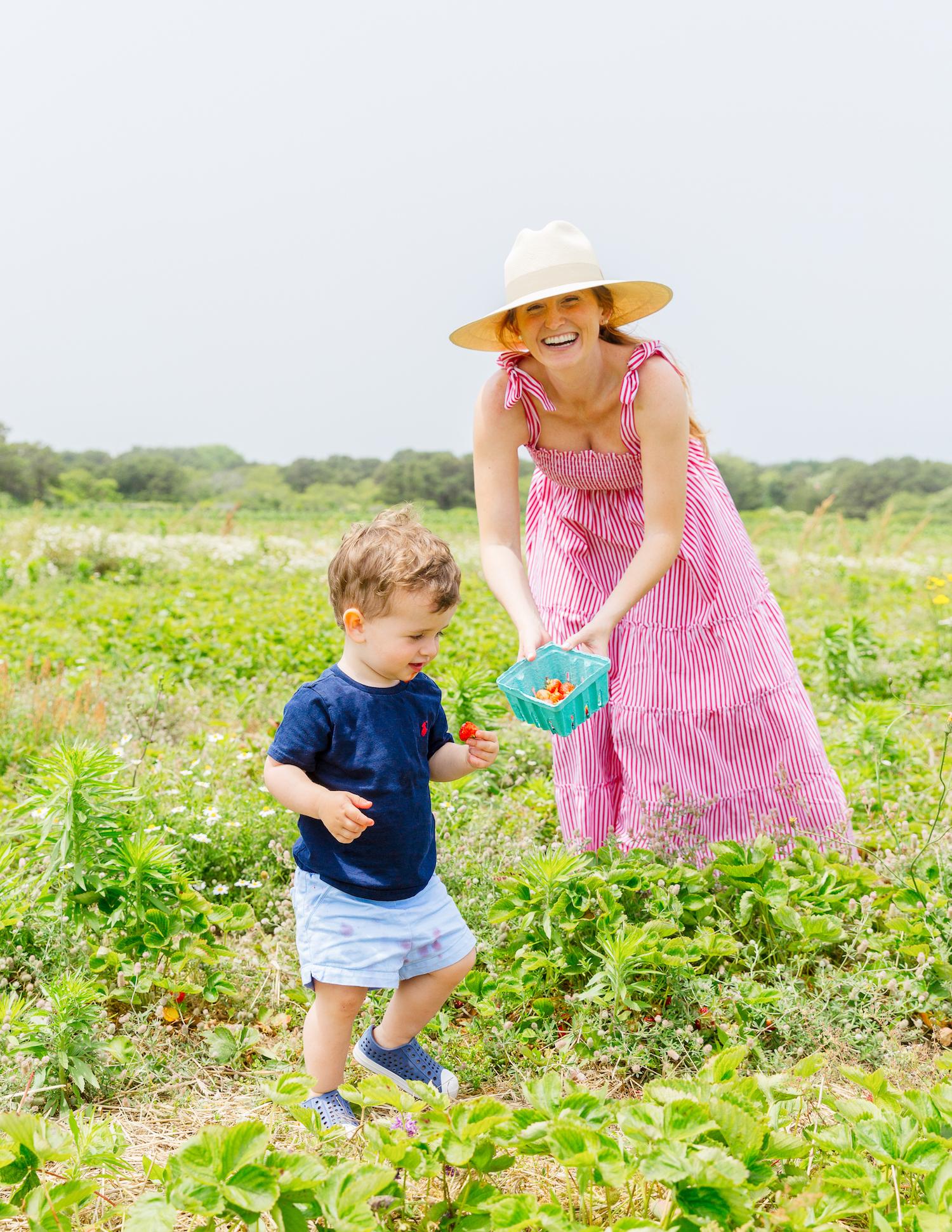bartlett's farm strawberry picking maxwell & geraldine brooke dress in red stripe