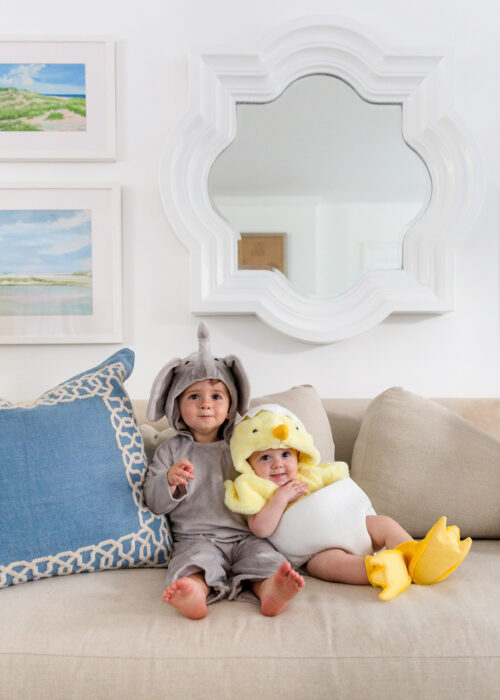 baby elephant and baby chick halloween costumes